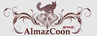 AlmazCoon.ru