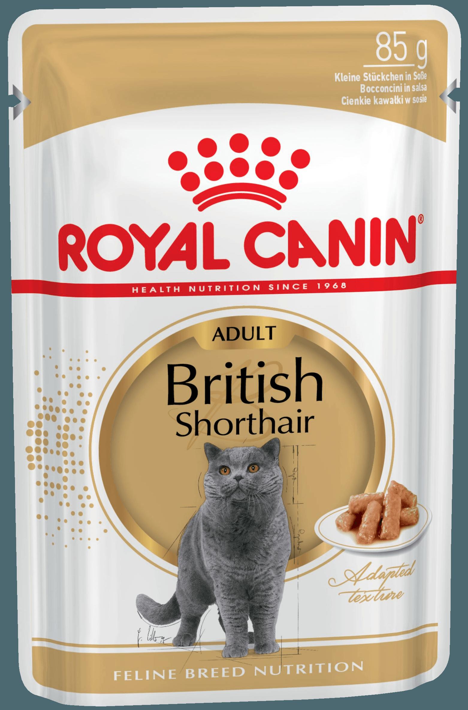 Royal Canin для британских короткошерстных кошек старше 12 месяцев