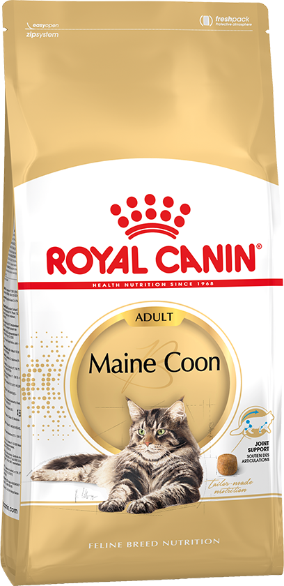 ROYAL CONIN MAINE COON ADULT
