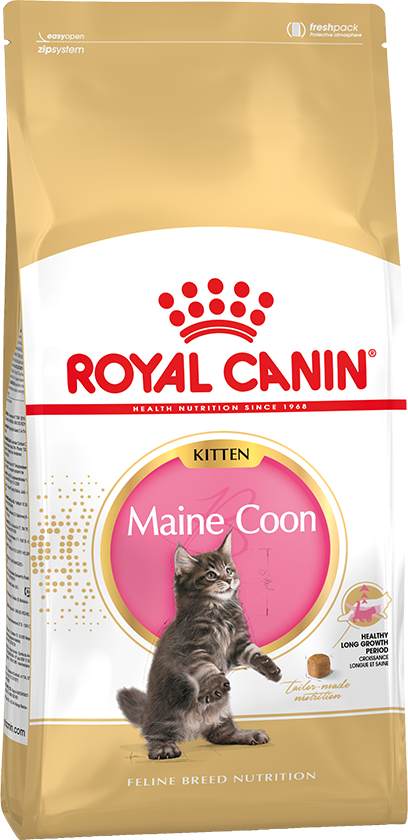 ROYAL CONIN MAINE COON KITTEN