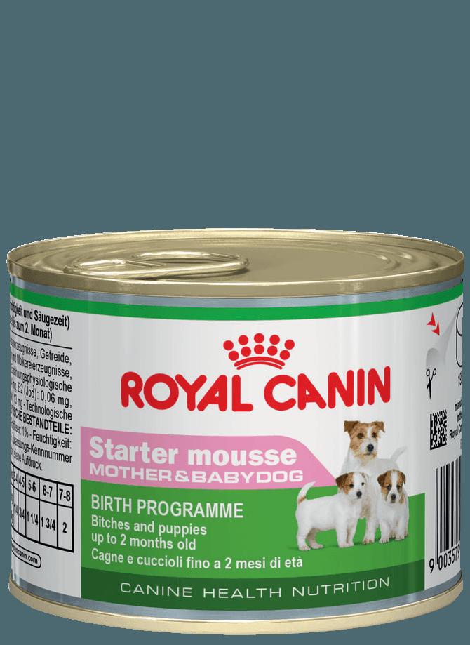 ROYAL-CANIN STARTER MOUSSE